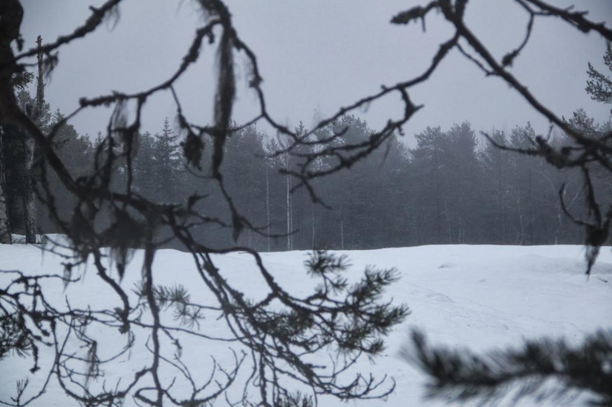 Лапландия, горнолыжные курорты