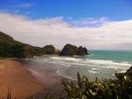 NZ_031